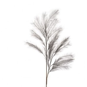 Pampas grigio in Fibra di tessuto 113h